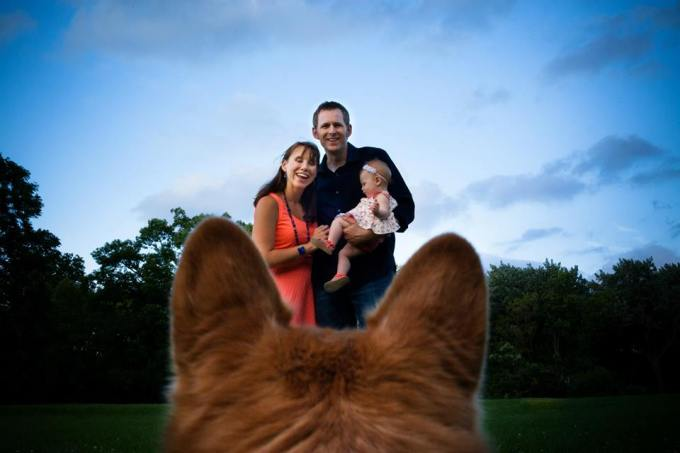 Family through a corgi's eyes