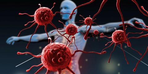 molecules recherche medecine proteines système immunitaire