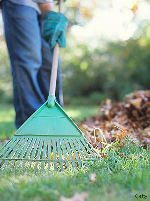 Seven Lessons Yard Work Has Taught Me About Leadership Leading