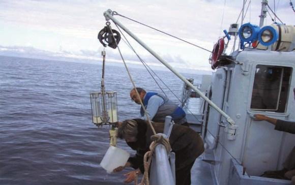 Отбор проб планктона с корабля