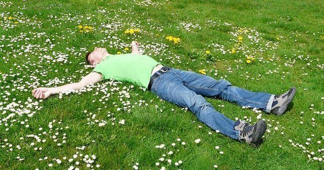 dormir_campo_flores