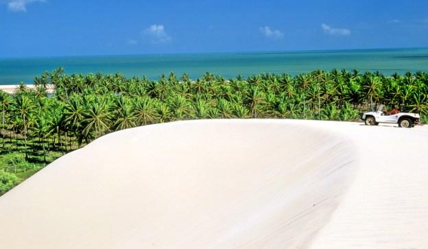 """Praia do Forte se encuentra 60 km al norte de San Salvador de Bahía, y se accede por la """"ruta de los cocos""""."""