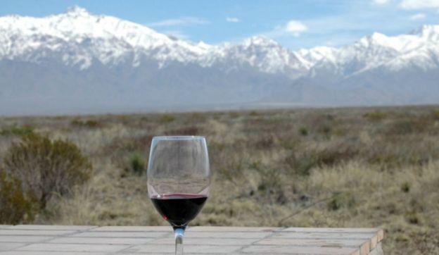 La historia del vino en Mendoza