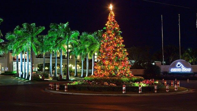 Tree Lighting Ceremony Dc Christmas In Turks And Caicos Best Place To Spend Your Holiday