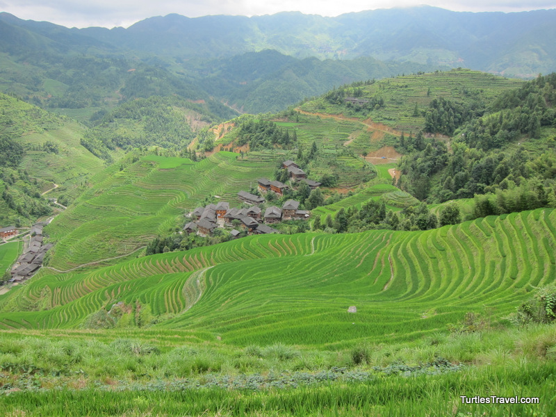 Looking at The Longsheng Rice Terraces