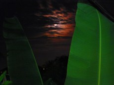 Siem Reap Moonrise