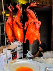 Roast Duck, Hanoi