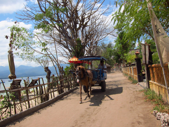 Horse cart on Gili Air