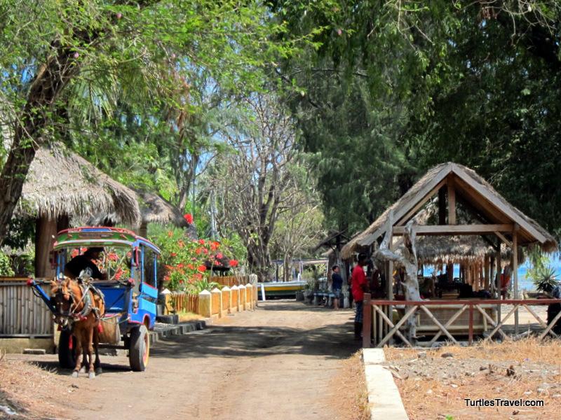 donkey cart transportation mode