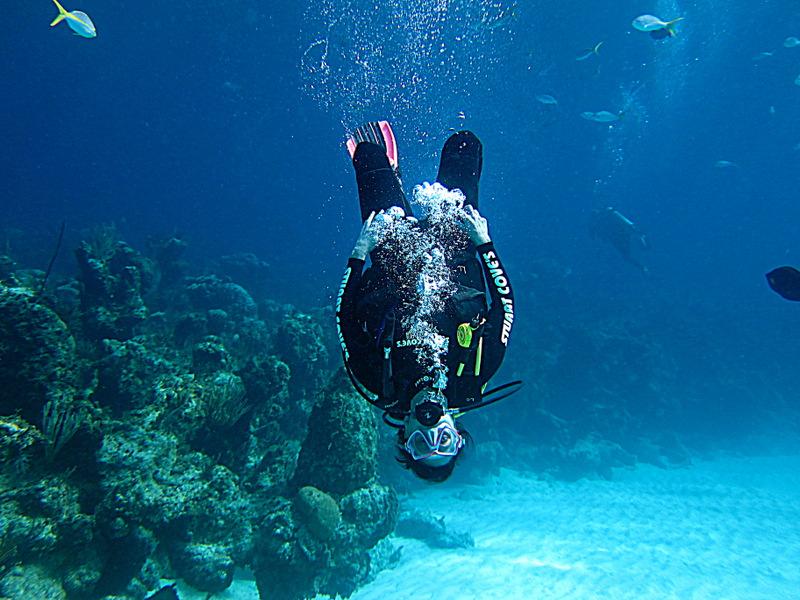 T Stuart Cove SCUBA