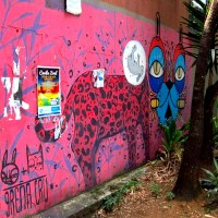 Street Art: Medellin's Voice of the People