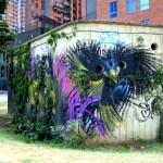 Medellin Graffiti (40)