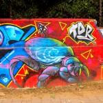 Medellin Graffiti (51)