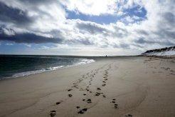 Chatham Footprints
