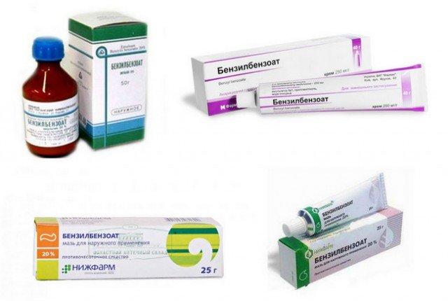 Чесотка: симптомы, фото, первые признаки у взрослых, способы лечения