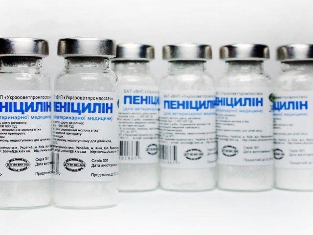 Первый признак сифилиса, фото, симптомы и лечение, прогноз