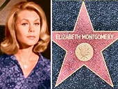 Elizabeth Montgomery from Betwitched