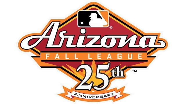 AFL 25 Years Logo_FNL