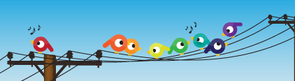 live streaming birds