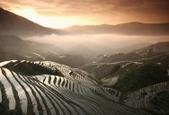 Picture of the Day: Rice Terraces from Above