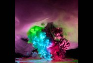Incredible Plumes of Ink Photographed Underwater