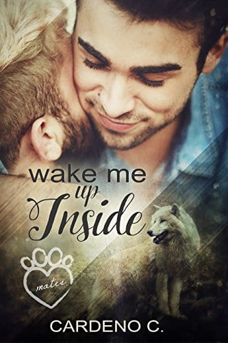 Wake Me Up Inside by Cardeno C: Quick Review