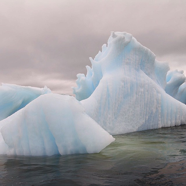 Another incredible #iceberg from our adventure in #Antarctica. The shapes,…