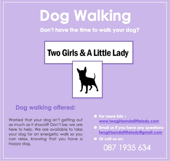 dog walking south dublin Two Girls  a Little Lady