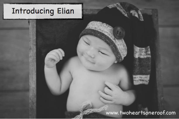 Newborn birth announcement - Introducing Elian