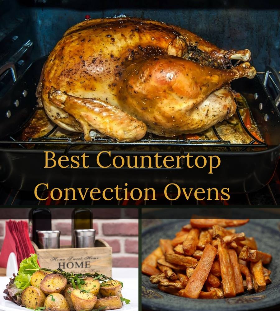 Best Countertop Convection Oven A Guide For 2020