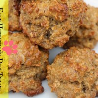 Homemade Dog Treats - Peanut Butter Oatmeal