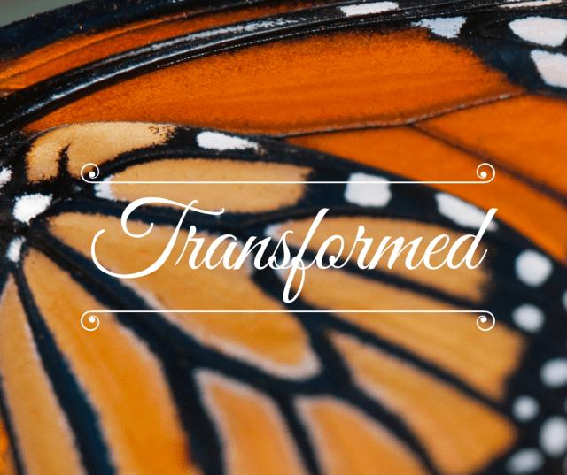 TRANSFORMED (1)