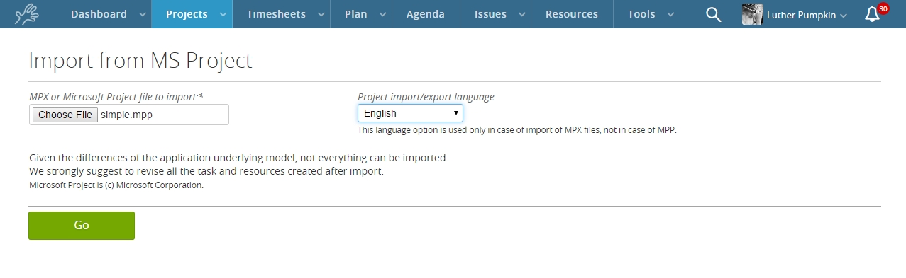 MS Project Import / export Twproject support
