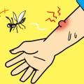 蚊にさされたイラスト