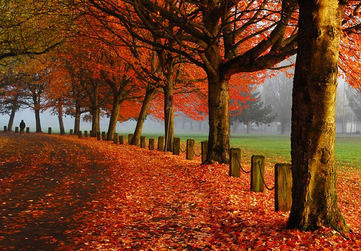Better Homes And Gardens Fall Desktop Wallpaper British Columbia Tyson Trepidations