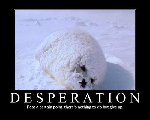 Sarcastic Wallpaper Quotes Desperation Quotes Quotesgram