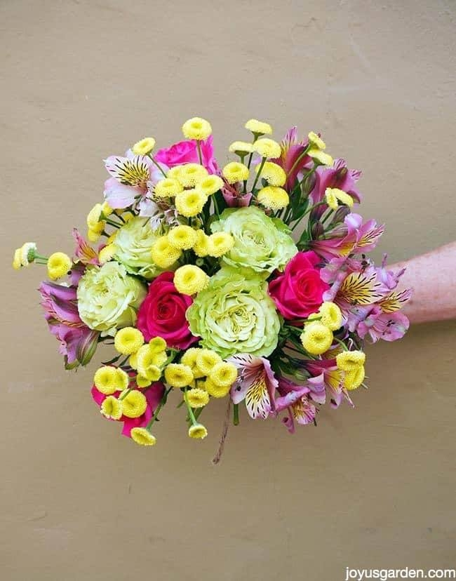 The Language of Flowers - Napa Master Gardener Column - ANR Blogs