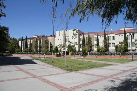Ucla University Housing