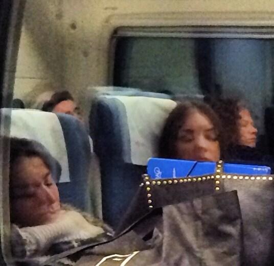 Estudiants de la UdG en tren
