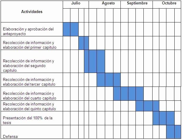 Cronogramas De Actividades En Excel  Mini Aplicaciones En