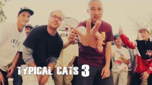 "Typical Cats – ""The Crown"" Video"