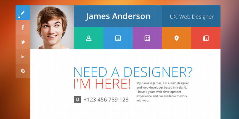 19 Professional Online Resume  CV WordPress Themes 2014 - A Graphic - resume wordpress theme