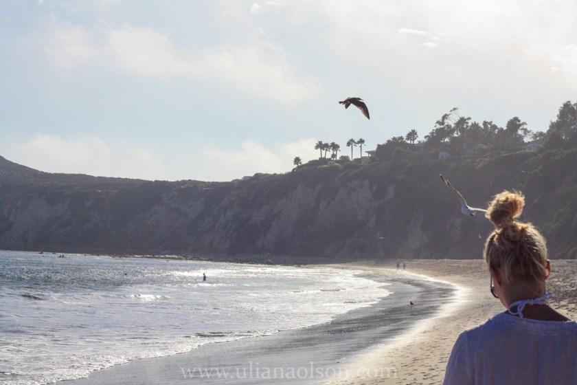 Malibu-Paradise Cove (12)