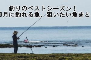 10月釣り