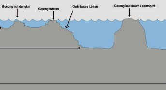 Cara mengetahui tempat yang banyak ikan di laut