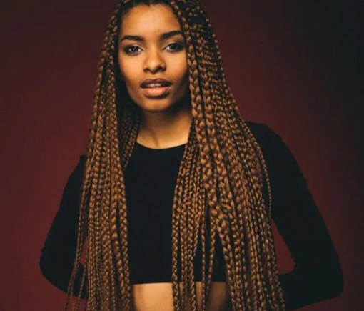 63 Box Braid Pictures That Ll Help You Choose Your Next