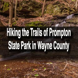 Hiking in Prompton State Park