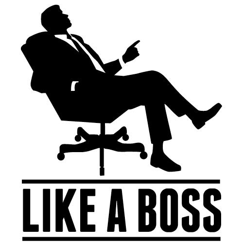 Like A Boss Meme
