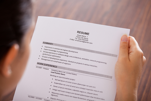How to Use a Business Plan Template as a Resume Writing Tactic - start a resume writing business