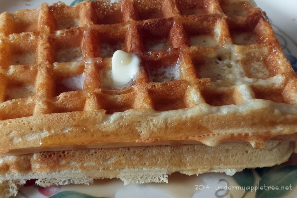 Breakfast Waffles on the George Foreman Grill Under My Apple Tree